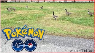 Pokemon Go - Episode 33 (APK Teardown 0.125.1 / Getting jiggy with geese)