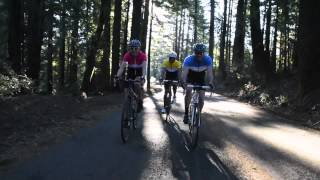Fuji Finest Women's Road Bike Review By Perfromance Bicycle