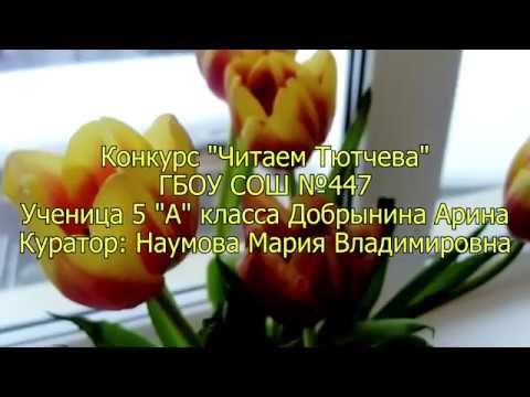 Изображение предпросмотра прочтения – АринаДобрынина читает произведение «Видение» Ф.И.Тютчева