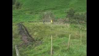 Vivienda Ecológica Autosustentable Permacultural - Inicio de proyecto