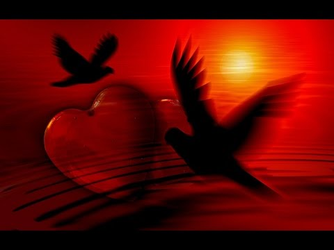 Wallpaper Hd 3d I Love You : Beautiful 3D Love Heart HD Images Pics Photos Wallpapers - YouTube