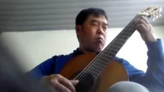 Haydn Andante Guitar solo