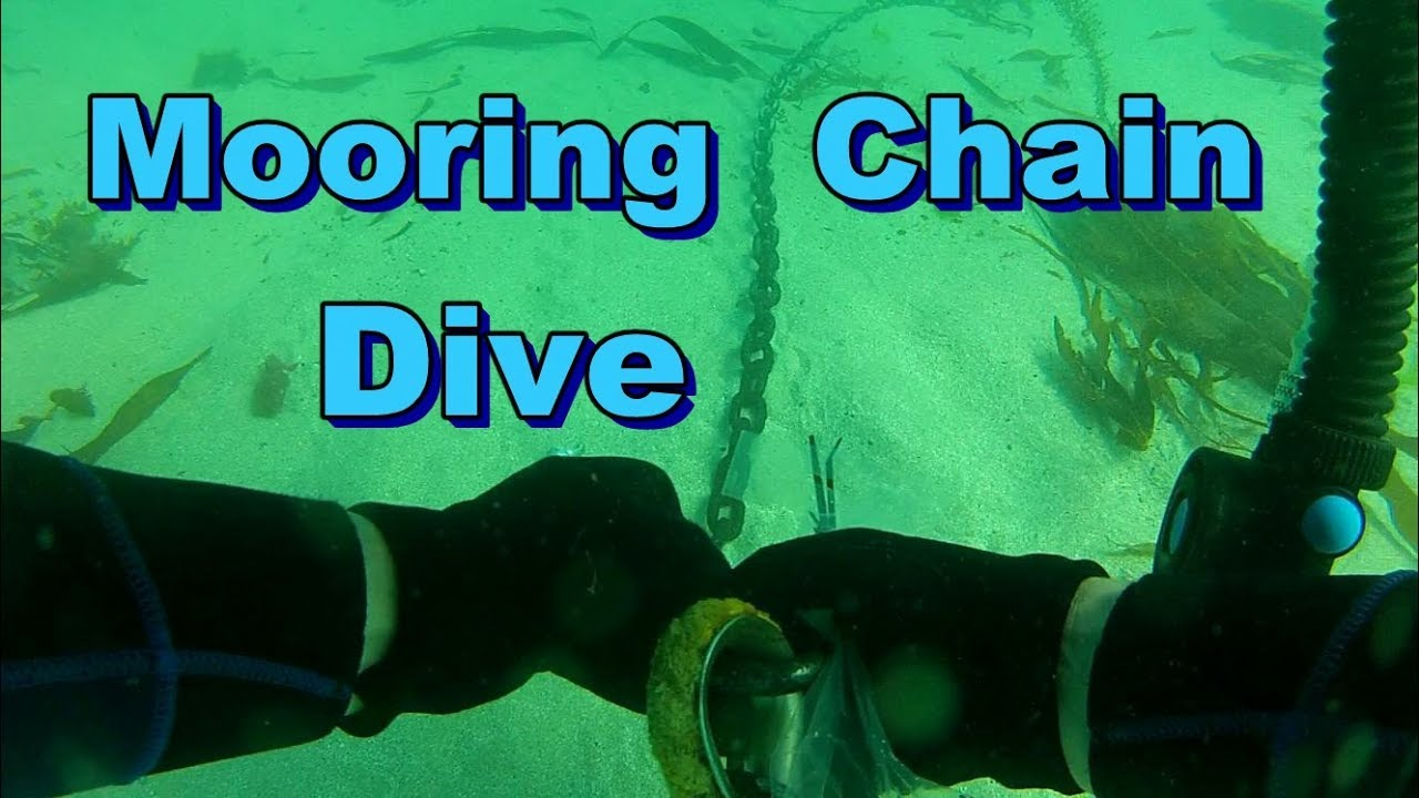 Mooring Chain Dive