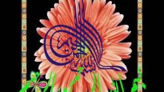 Imam Mahdi Ki Zaroorat.wmv