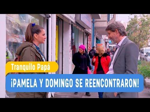 Tranquilo Papá - ¡Pamela y Domingo se reencontraron! / Capítulo 29