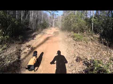 MTB doggie Milo - Bent Creek Powerline descent 2/13/2016