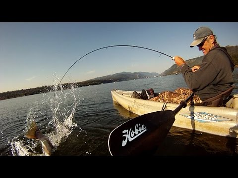 Kayak Fishing For Steelhead-Fall 2014