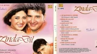 Ek Masoom Sa Chehra [Full Song] (HD) With Lyrics - Zinda Dil