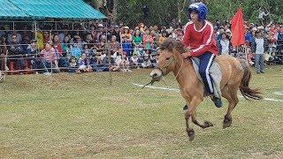 Cuộc đua ngựa thồ trong hội làng có một không hai ở Việt Nam