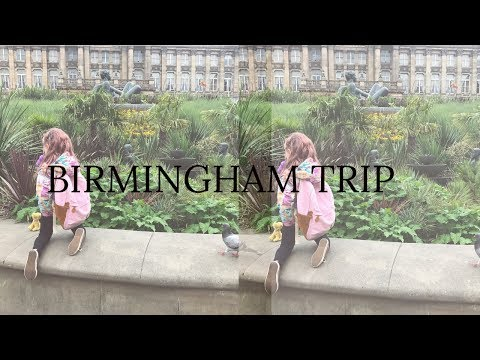 BIRMINGHAM DAY TRIP / VEGAN FESTIVAL / ANIMAL RIGHTS/ TRAIN RIDE AND COFFEE / THE REGANS