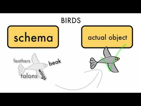 Schema Theory and Cognitive Load Theory