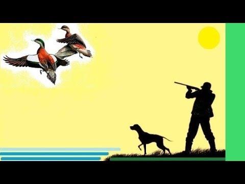 Как целиться, стрелять и попасть в летящую утку. Упреждение. Shooting at a flying duck