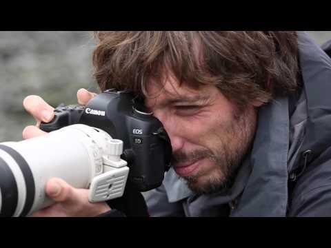 Eqalusuaq, Rencontres avec les derniers prédateurs cachés