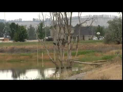 A Teen Has Drowned in Owyhee County