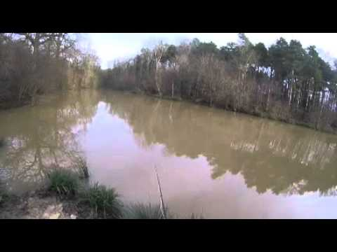 Winter Fly Fishing for Carp