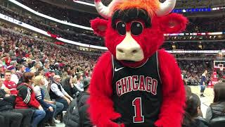 Benny the Bull and Bobby