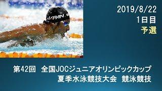 第42回JOCジュニアオリンピック夏季1日目予選