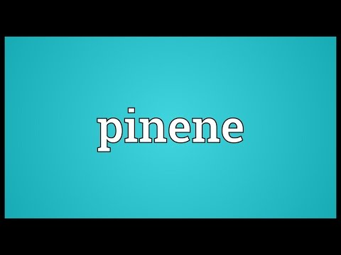Pinene Meaning