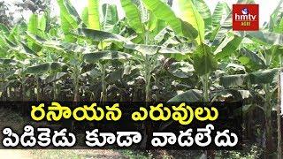 Banana Cultivation | Success Story of Annapureddy Prakash Reddy | hmtv Agri