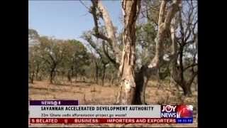 SAD SADA STORY: SHOCKING VIDEO OF SADA TREES PROJECT