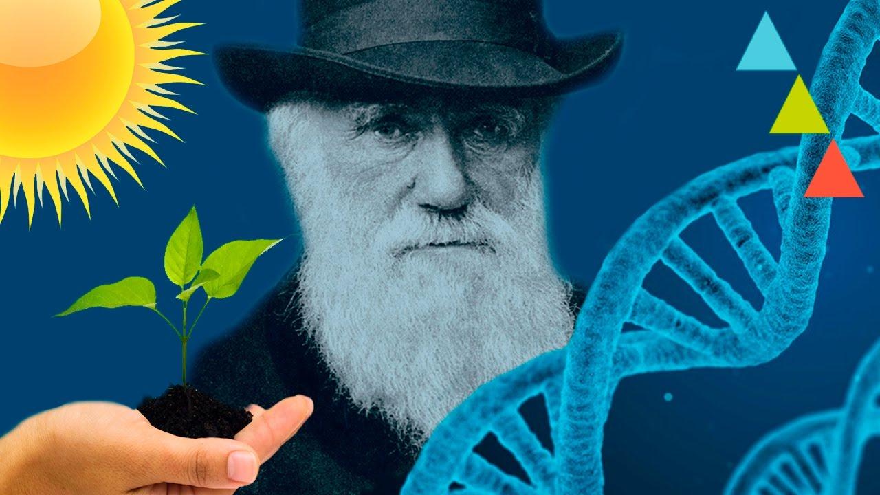 Download Cosas de biología que debes saber para no quedar mal