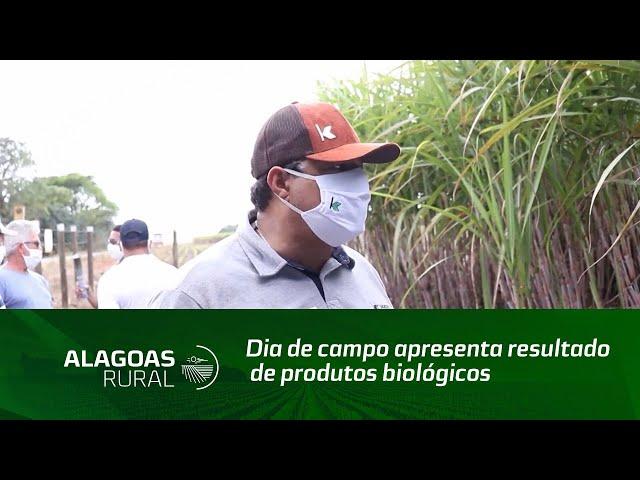 Dia de campo apresenta resultado de produtos biológicos na cultura a cana de açúcar