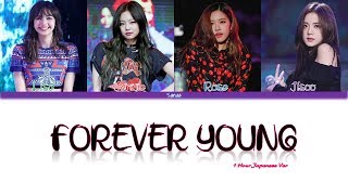 1 Hour ✗ BLACKPINK - FOREVER YOUNG (JAPANESE VER.)
