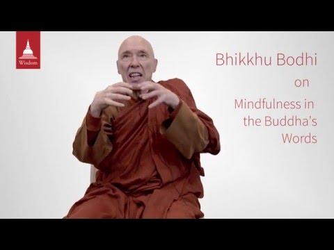 The Buddha on Mindfulness