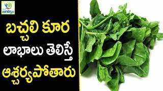 Benefits Of Spinach Bachali Aaku - Health Tips in Telugu || Mana Arogyam