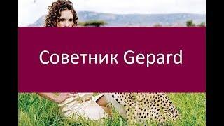 Советник Gepard. Ключевые особенности