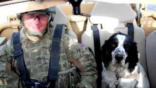 Raf Police Dog Handler, Corporal Mick Mcconnell, Was Injured While Serving In Afghanistan