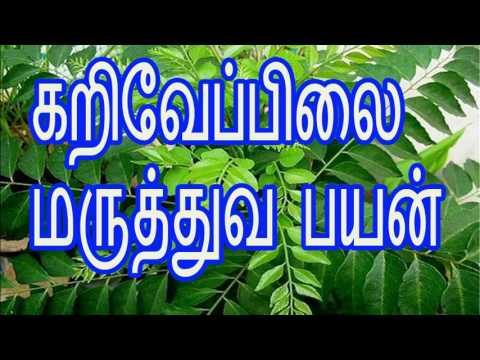 கறிவேப்பிலை மருத்துவ பயன் karuvepillai health benefits in tamil