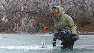 РЫБАЧКА ТЯНЕТ ИХ ОДНУ ЗА ОДНОЙ Голодные щуки отшнурованного ерика 2 Рыбалка в Астрахани 2021