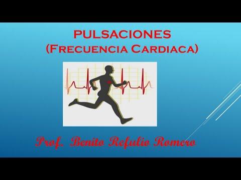 las-pulsaciones-(frecuencia-cardÍaca)