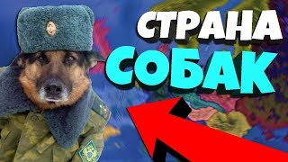 РЕСПУБЛИКА СОБАК В Hearts of Iron 4: Battle Royale + Doge Republic