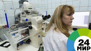 Обзор прессы: в России создали растворяющиеся в теле костные импланты - МИР 24