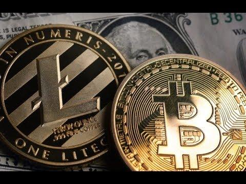 New York Coin, Litecoin + BlockFi, Elon Musk + Bitcoin, EOS Voice & Bitcoin Is Golden