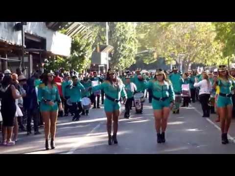 Panama parade in brooklyn,n.y