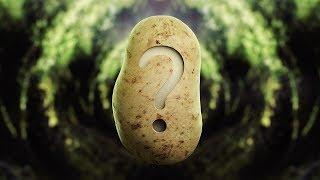 The Potato Paradox
