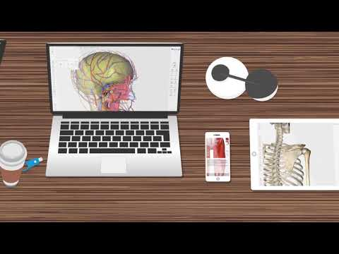New Generation Learners | 3D Organon Anatomy