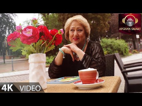 Parastoo Mehryar - Maida Begum OFFICIAL VIDEO