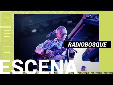 Escena: Primera edición de Radiobosque | Slang