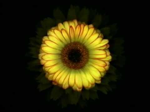 Harold Feinstein- Garden of Psalms