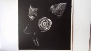 Rose Scratchboard Art Thumbnail