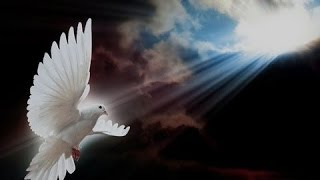 """""""What Is The Name Of The RUACH ha KODESH (HOLY SPIRIT)?"""" Amightywind.com Prophecy 90"""