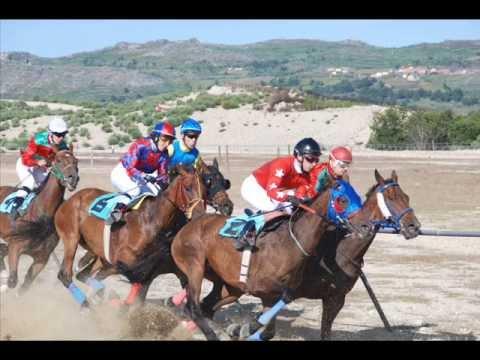 UHF Cavalos De Corrida