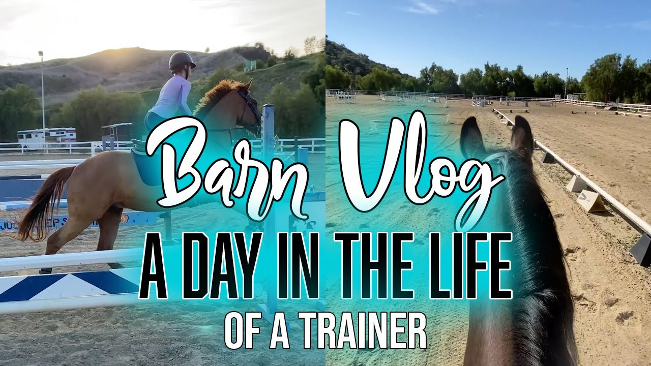 BARN VLOG #1: A Day In The Life (of a trainer) | ZL Equestrian