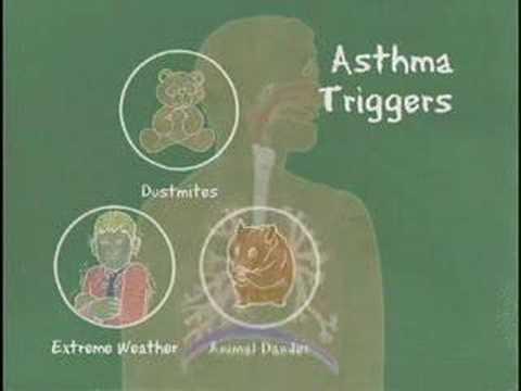 Asthma Education- Health Plus