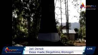Download Video SEREM....JATI DENOK,SLOGOHIMO DI BUNGKUS KAIN KAFAN MP3 3GP MP4
