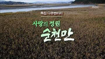 [특집다큐] 사랑의 정원 순천만 #1 (Garden of Love Suncheon Bay #1)